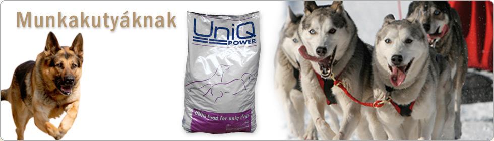 Uniqdog